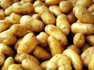 aardappels hebben veel koolhydraten